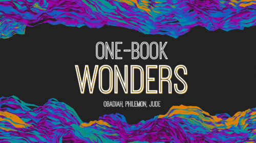 One Book Wonders